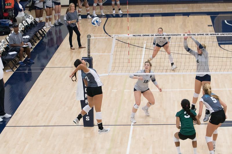 HPU Volleyball-92595.jpg