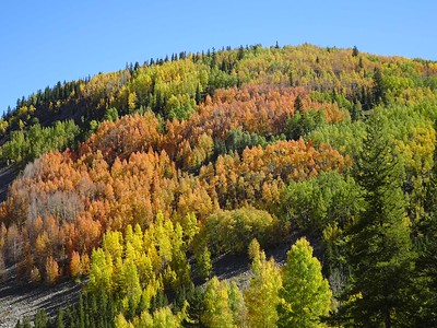 2016-09 Colorado Fall Colors