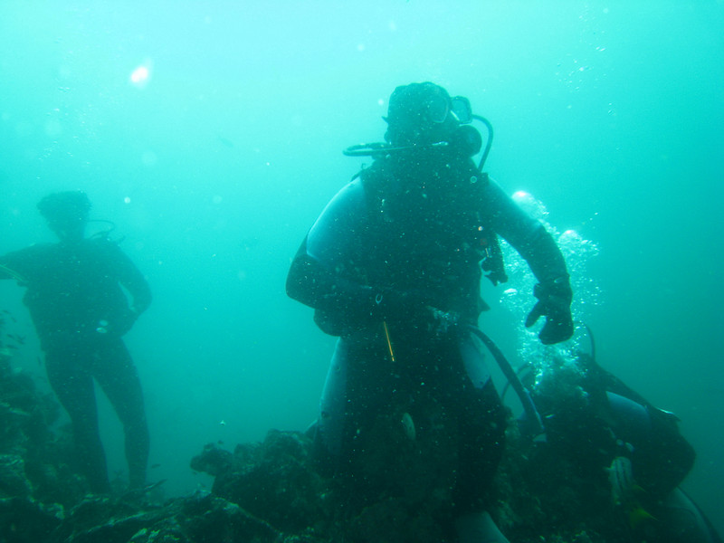 Diving in the Galapagos (182 of 392)