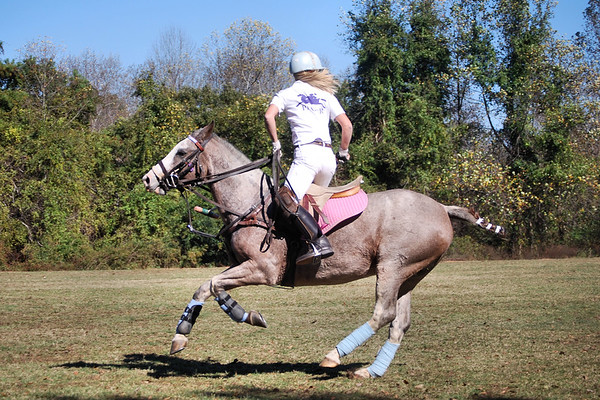Chukkar Farm Polo - Last Match of the Season - October 31, 2010