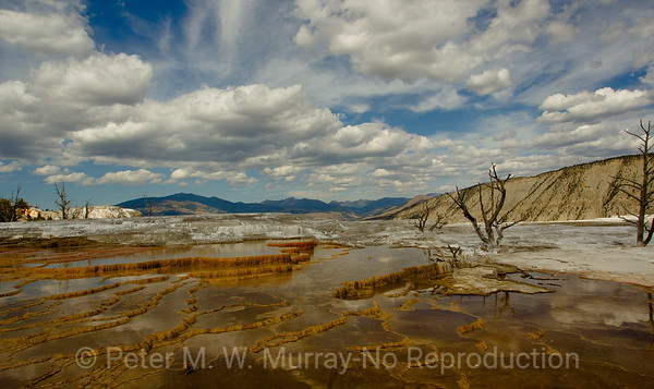 Yellowstone National Park Scenics