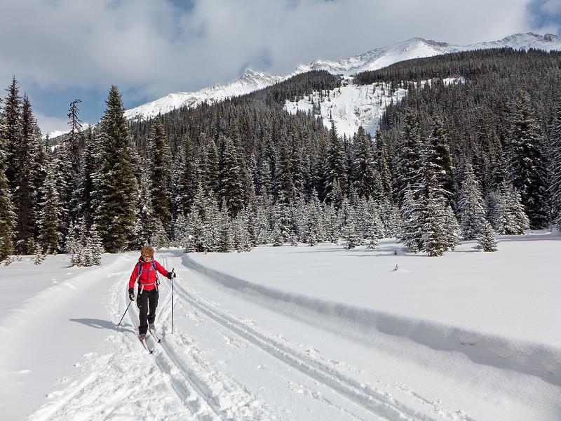 Tyrwhitt trail at Peter Lougheed Provincial Park, March 1.
