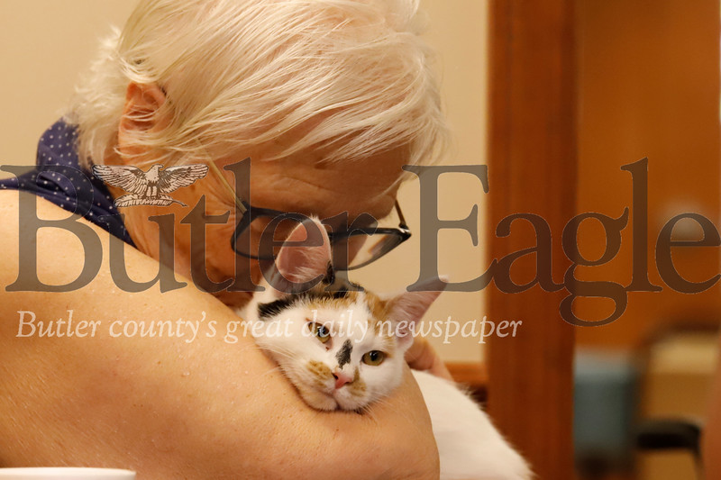 Nancy Shattuck, 82, snuggles with a Butler County Humane Society rescue cat. 08/01/19 Seb Foltz/Butler Eagle