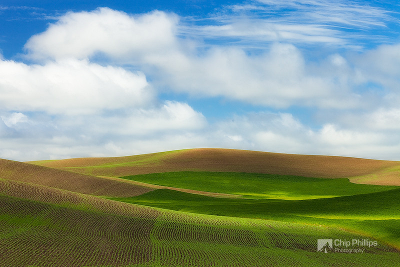 """Rolling Green Hills Palouse #2""