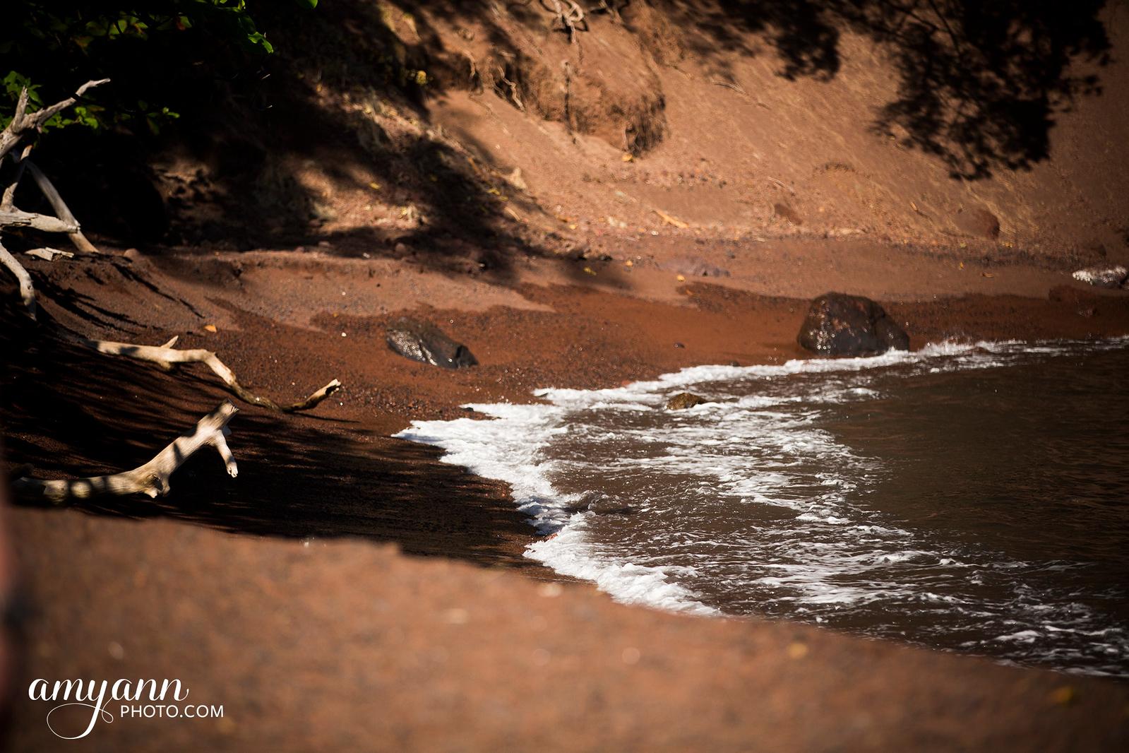 hawaii_amyannphoto_41