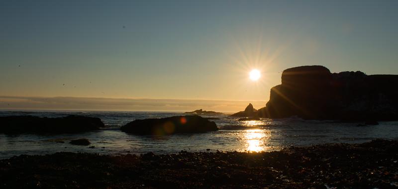 OregonSunStar2.jpg