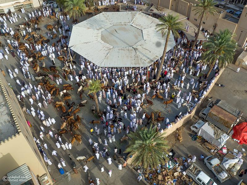 DJI_0050- Oman.jpg