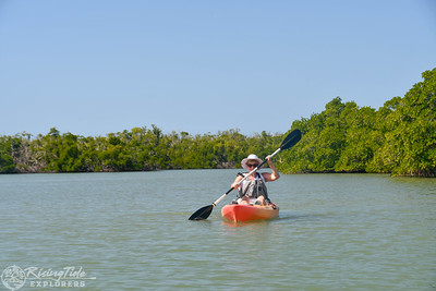 1230PM Mangrove Tunnel Kayak Tour - Mansfield, Taylor, Carrel & Snyder