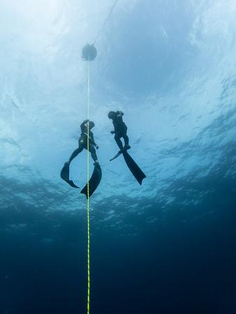 cool underwater photos