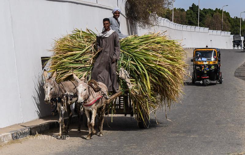020820 Egypt Day7 Edfu-Cruze Nile-Kom Ombo-6204.jpg