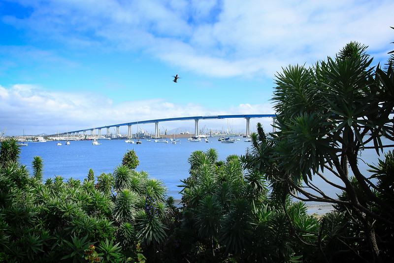 Flight over Coronado Bridge, San Diego, CA