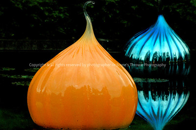 016-dale_chihuly_glass-mo-04jul06-0065