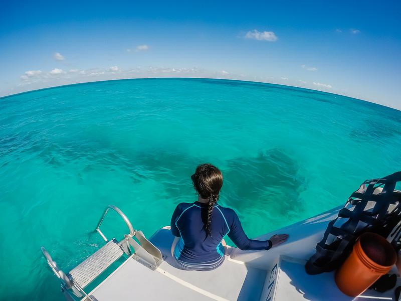 Lina Stock Snorkeling in Florida