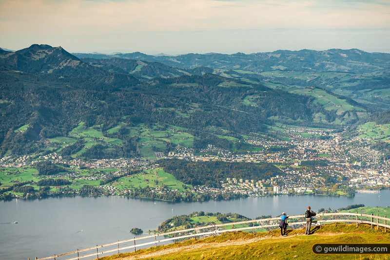 Lucerne Lookout
