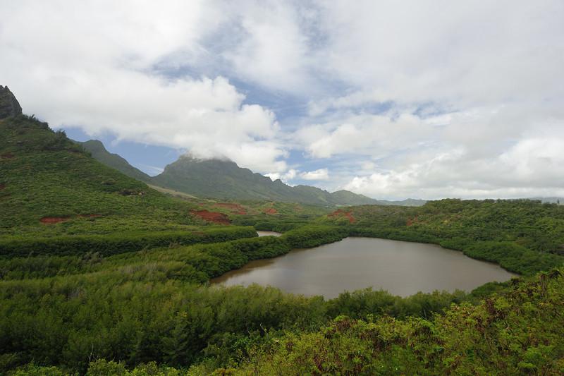 Kauai_677_96.jpg