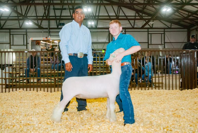 kay_county_showdown_sheep_20191207-121.jpg