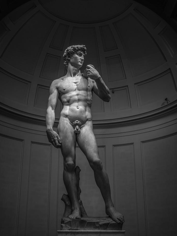 佛罗伦萨学院美术馆(Accademia Gallery),米开朗琪罗的大卫
