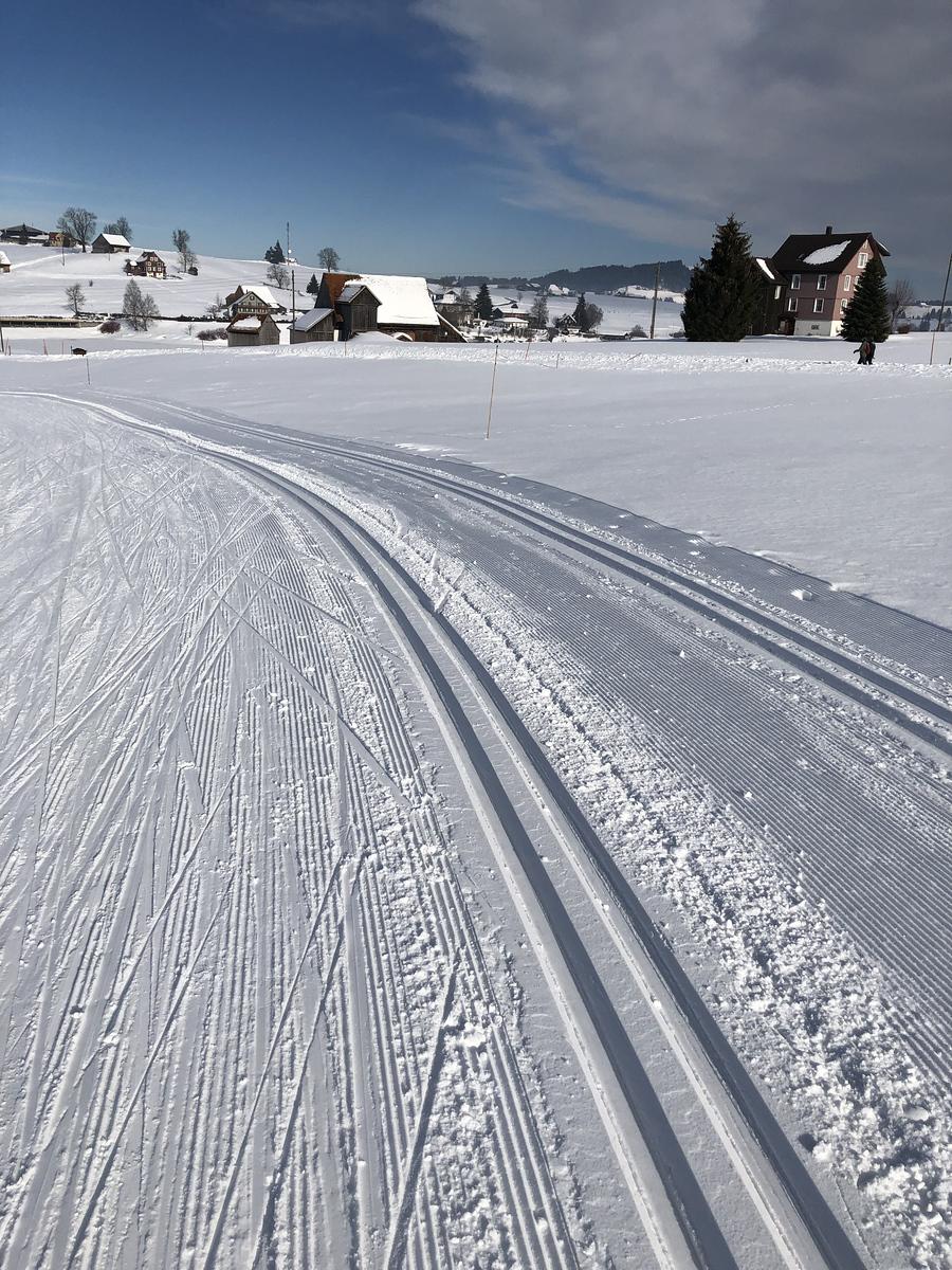 Groomed trails through the farmland