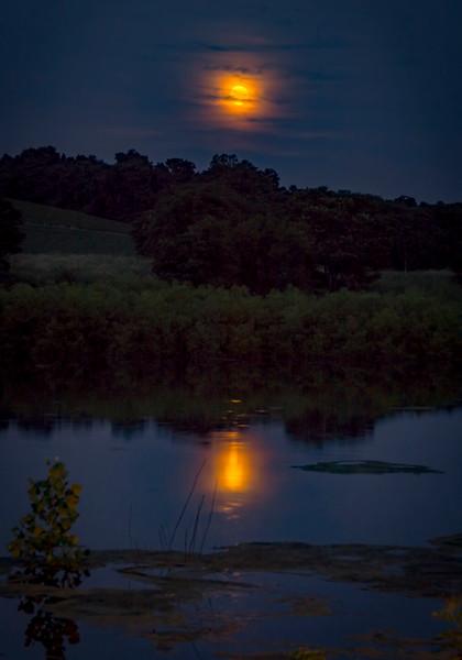 moon - solstice full moon - speedwell forge (p).jpg