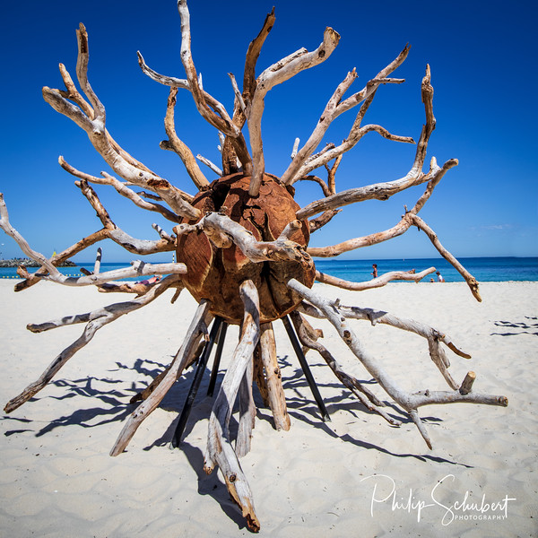 Scultures by the Sea