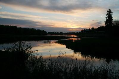 Loire du soir, à Combleux ... - 1