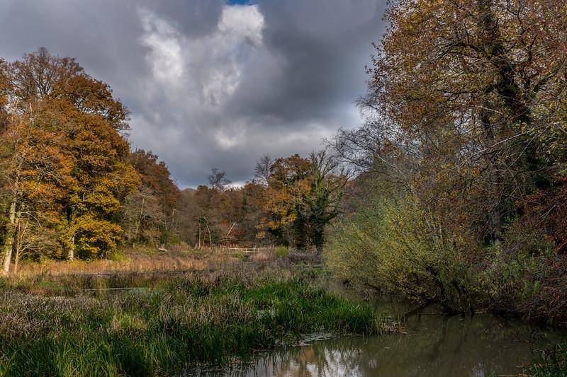 Wakehurst_Autumn-6145.jpg