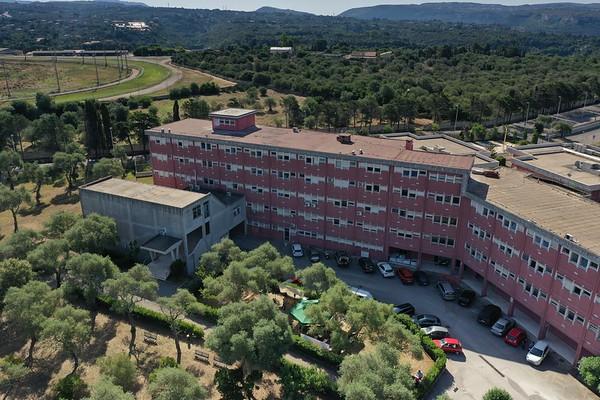 Conferenza chiusura Life Grifone - Lavori Dipartimento  - 10.07.2020
