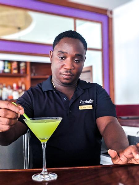 Jamal Lemongrass cucumber martini garnish.jpg