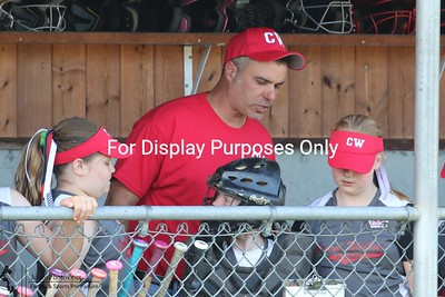 2017-06-27 CWLL 8-10 SB All-Stars vs Sedro-Woolley