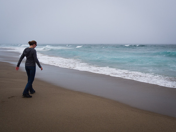 Point Reyes and Bodega Bay visit