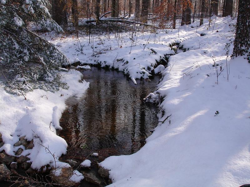 snow 120905 001.jpg
