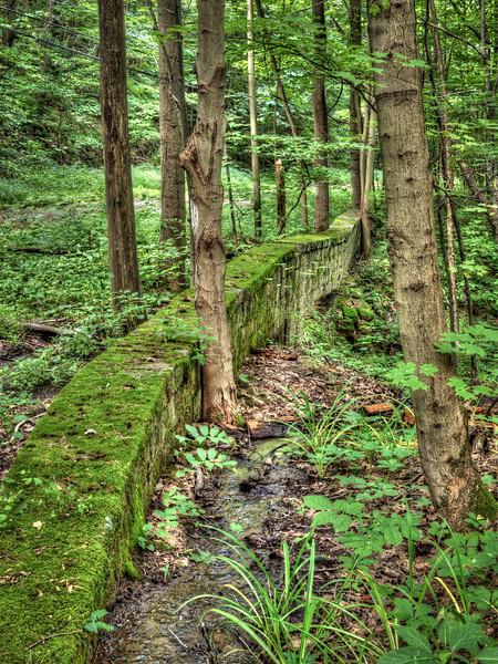 Old Culvert in the Woods-8068.jpg