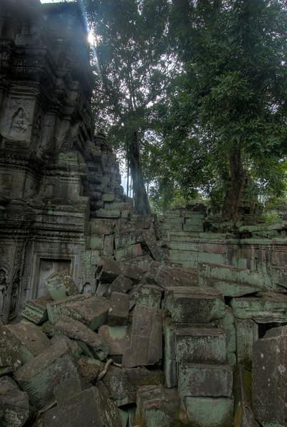 Ruins at Ta Prohm in Siem Reap, Cambodia