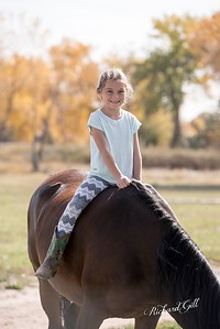Arvada Equestrian Center - candid photos