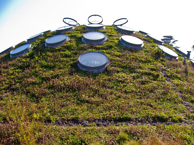 Rooftop_CAS.jpg