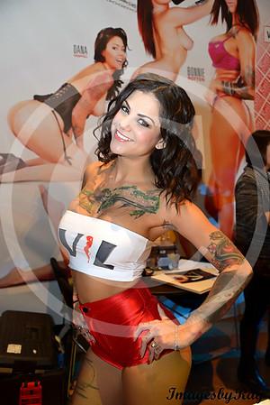 AVN / AEE Expo 2015
