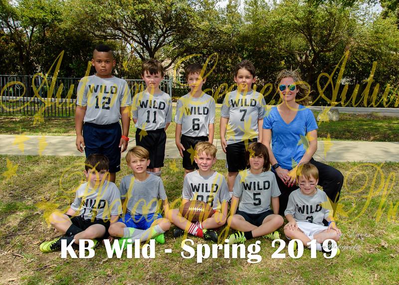 20190324 - # T5 KB Wild