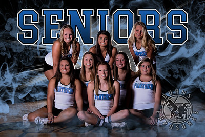 Panthers Cheer Seniors