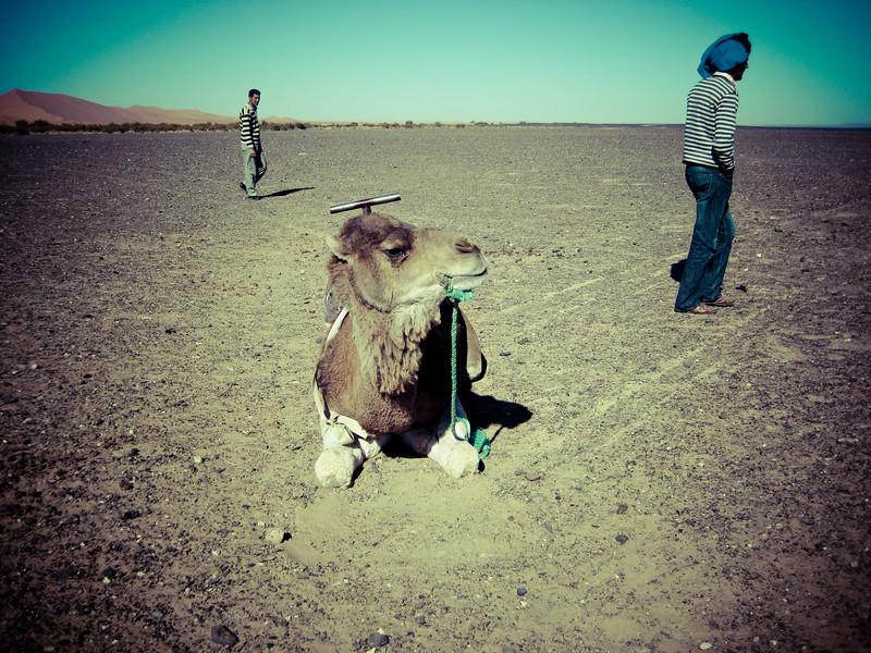 Day4-Sahara-48.jpg
