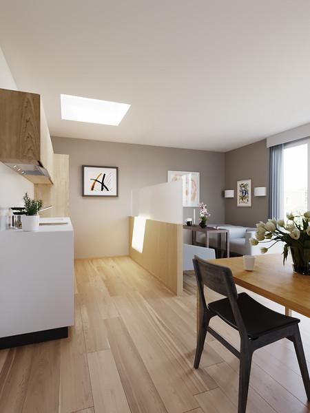 velux-gallery-kitchen-04.jpg