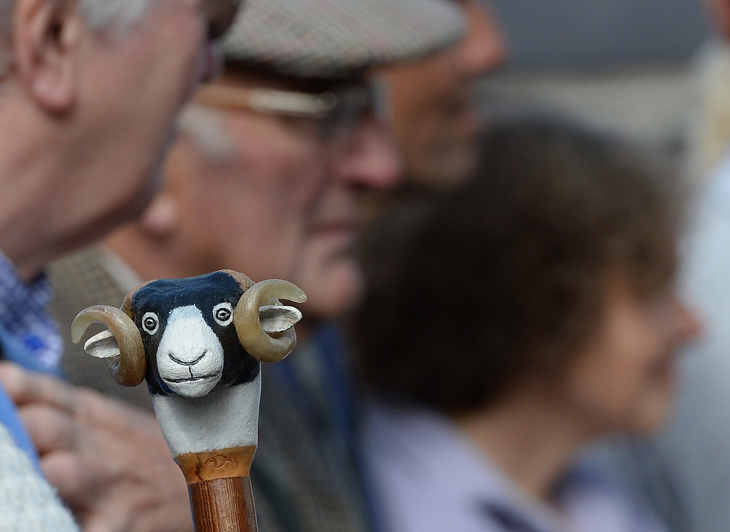 . MASHAM, UNITED KINGDOM - SEPTEMBER 28 A walking stick shaped like a sheep during the sheep fair in Masham September 28, 2013 in Masham. The fair, celebrating its 25th year, consists of many events over the weekend, including many sheep catagories such as sheep racing, sheepdog demonstrations and fleece stalls. (Photo by Nigel Roddis/Getty Images)