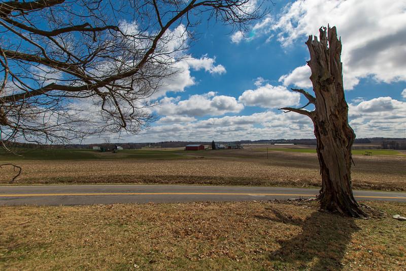 Hartville-spring-Landscape.jpg