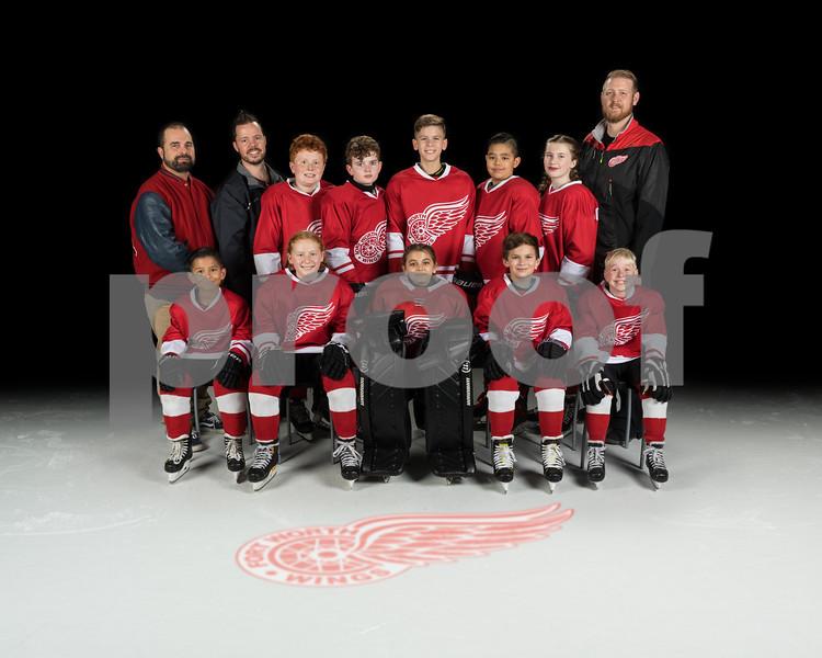 2020-01-15 NYTEX 12u Red Wings