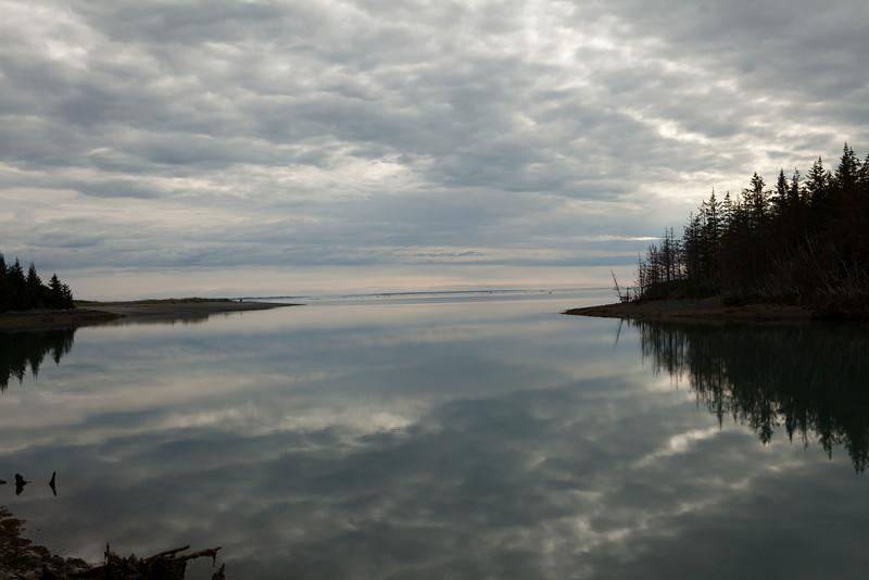 Alaska Icy Bay-4393.jpg