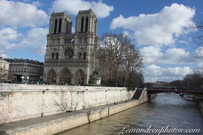Cathédrale Notre Dame de Paris-Mairie de Paris