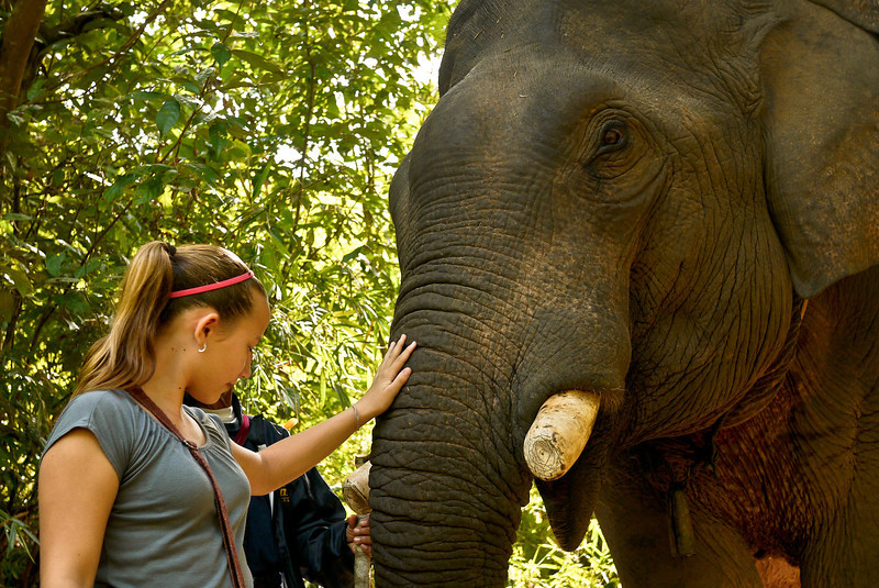Enjoying getting to know our elephant on the trek.