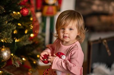 Alaina Christmas Mini