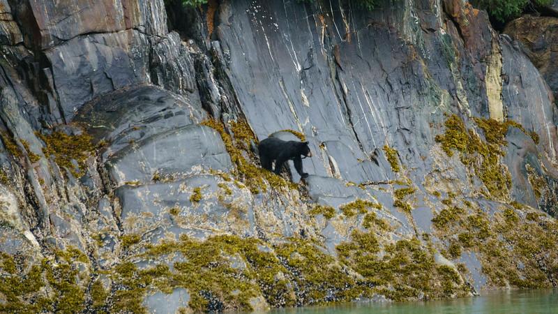 2016 Alaska - Susan Sony - 207 - 20160722.jpg