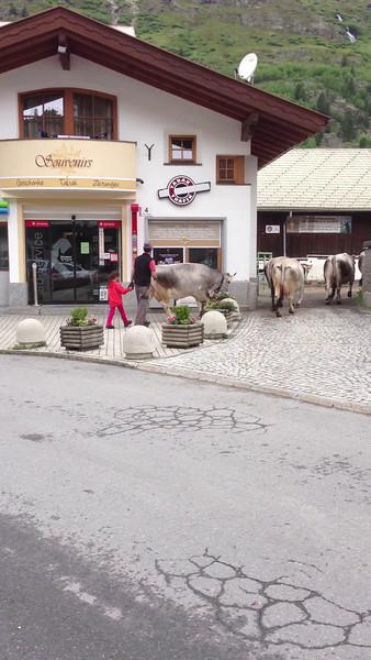 Obergurgl July 2013