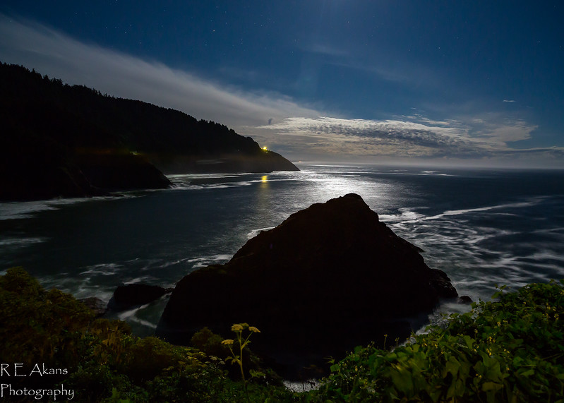 Cave Cove Moonlight 5523(1 of 1).jpg